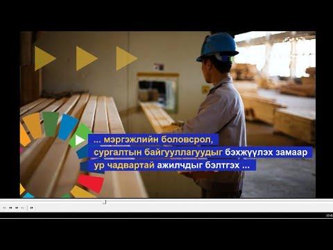 Олон улсын хөдөлмөрийн байгууллага Монголд